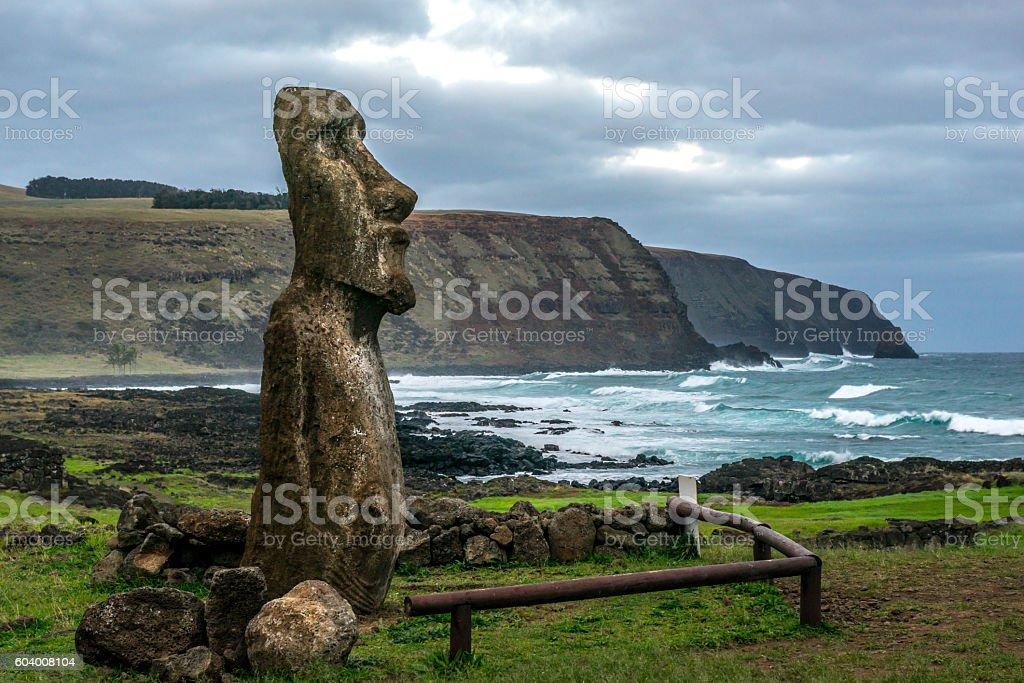 Moai by the coastal stock photo