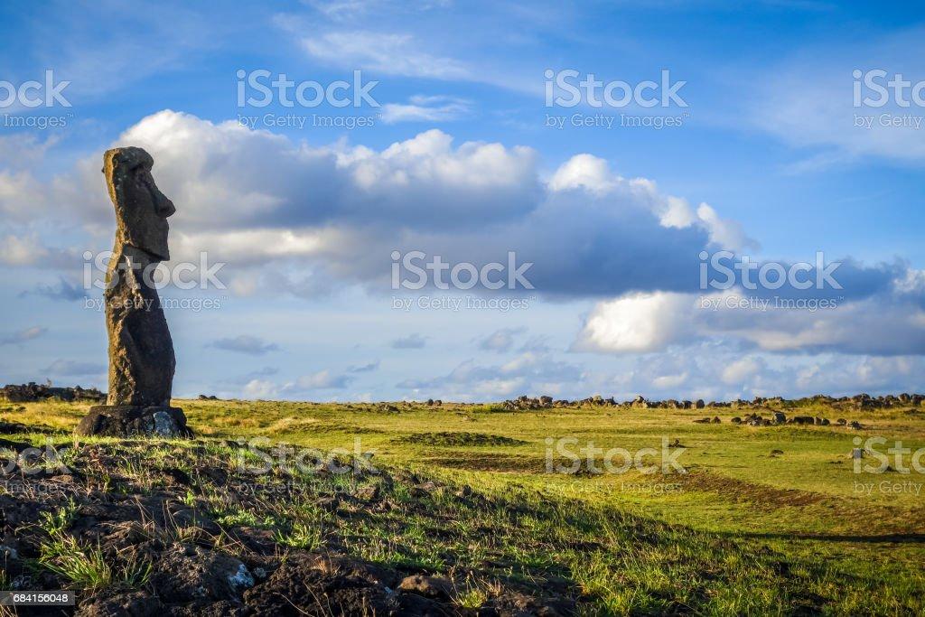 Moai statue, ahu akapu, easter island zbiór zdjęć royalty-free