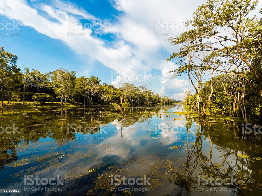 Moat in Angkor Thom in Cambodia stock photo