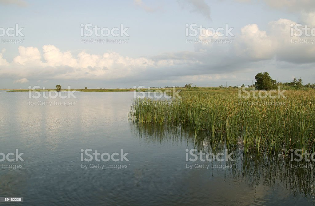 Mobile Bay Delta royalty-free stock photo