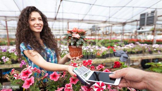 istock Mobile payment in garden center 818873560