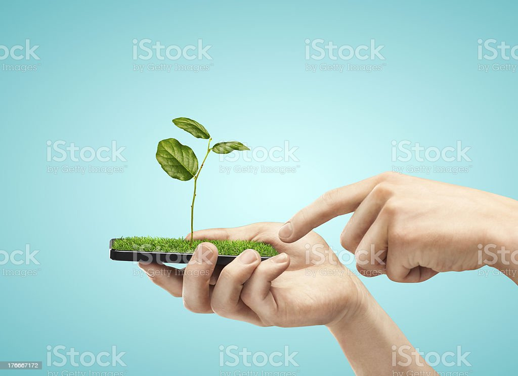 mobile phone with plant royalty-free stock photo
