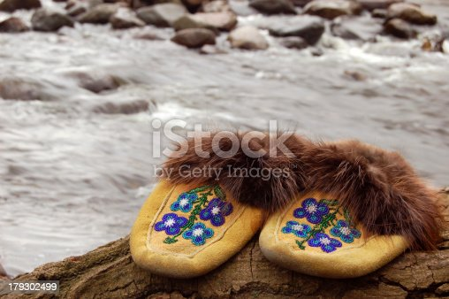 istock Moccasin 179302499