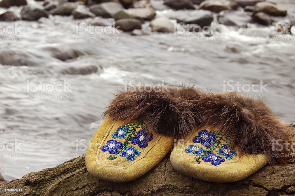 Moccasin stock photo