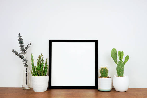 Mock up black square frame with potted plants and decor on a wood shelf against a white wall stock photo