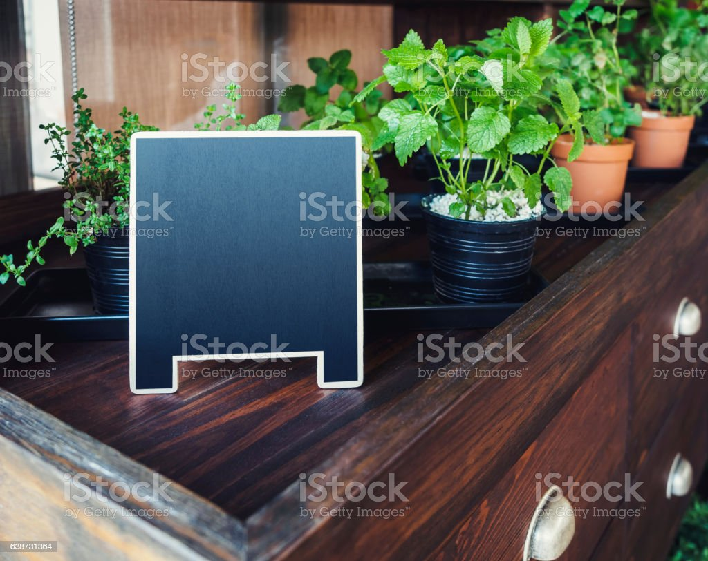 Mock up Menu Chalkboard stand with organic herb plants Gardening stock photo
