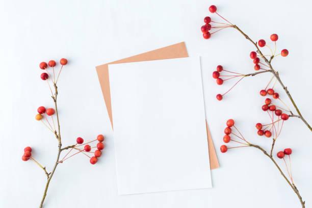 mock-up leer papierkarte und zweig mit kleine rote äpfel - pastellstifte stock-fotos und bilder