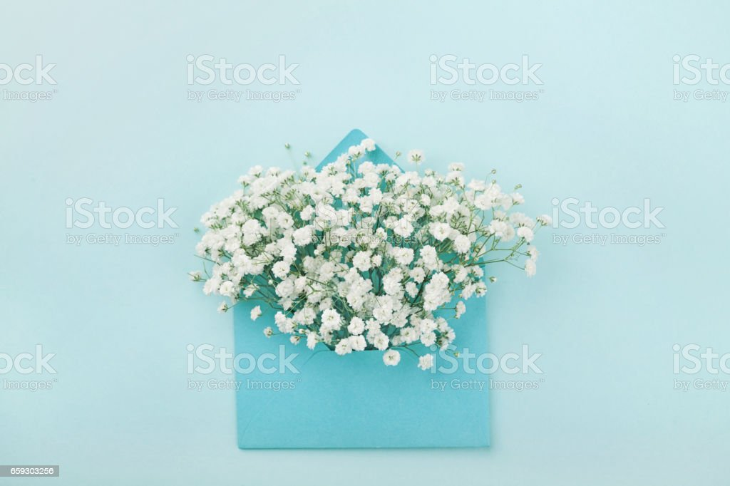 Mockup of gypsophila flowers in envelope. Flat lay style. stock photo