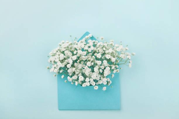 mockup av gypsophila blommor i kuvert. lägenheten låg stil. - flower bouquet blue and white bildbanksfoton och bilder