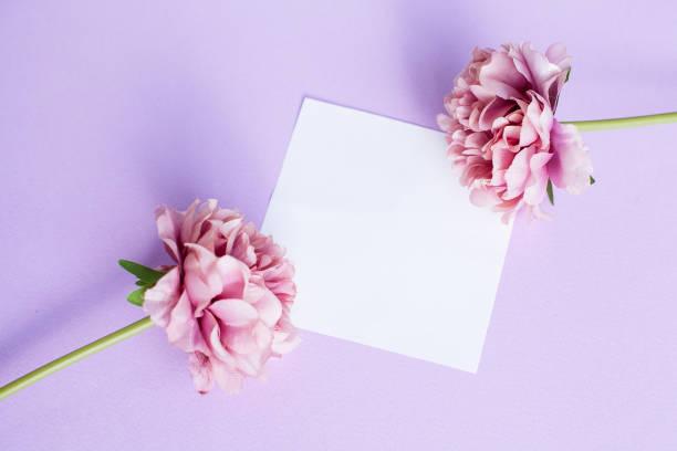 Mockup auf violettem Hintergrund mit weißem Papierblatt und Pfirsicheblumen, oben Ansicht. – Foto