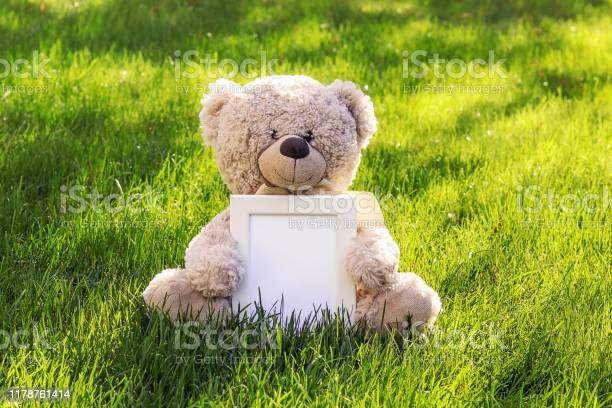 Mockup soft beige teddy bear toy holding white clean mock up frame picture id1178761414?b=1&k=6&m=1178761414&s=612x612&h=rradqbsrk1oy0kbyopl avkdsp72 zyrus kxvrjkke=