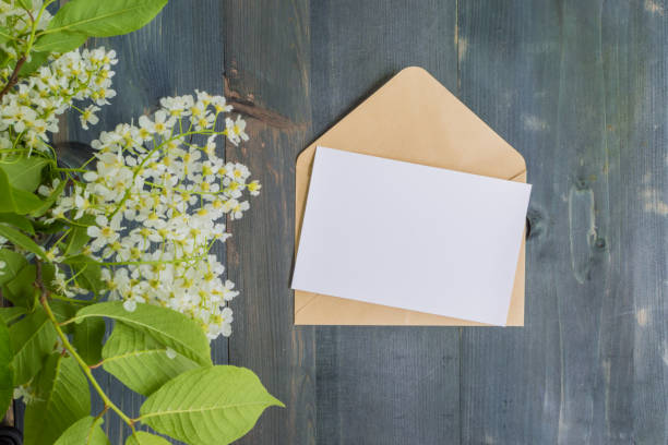 mockup white greeting card and envelope - postcard template stock photos and pictures