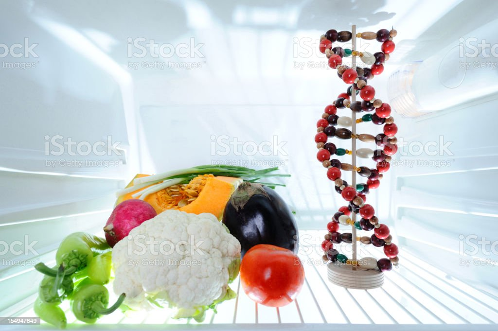 DNA model and vegetables in refrigerator stock photo