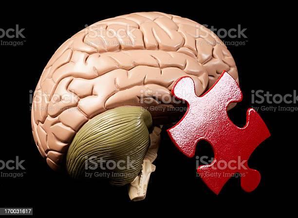 Model brain with jigsaw piece the human mind is puzzling picture id170031617?b=1&k=6&m=170031617&s=612x612&h=xdz csemrpclxzxixwlwrrcbhee1kipchueahcyjdoq=