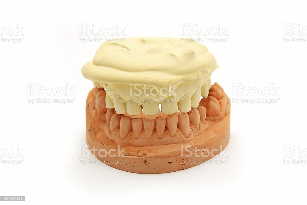 Model for dental technician...den6tures royalty-free stock photo