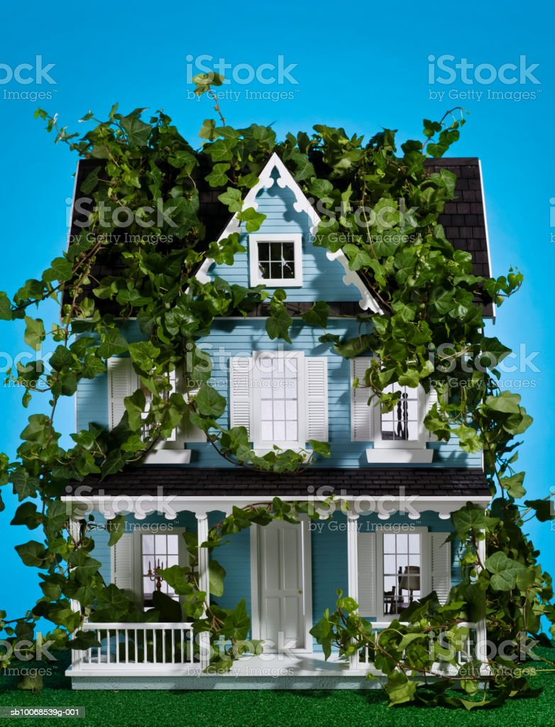 Model house covered in ivy, close-up royalty free stockfoto