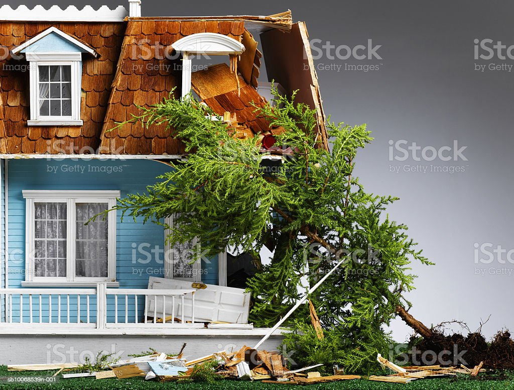 Model house damaged by fallen tree, close-up royalty-free stock photo