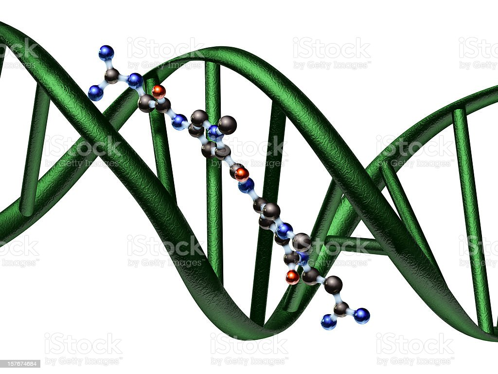 Model of an Antibiotic Drug Binding to DNA stock photo