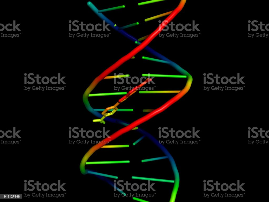 3d model of dna stock photo more pictures of abstract istock 3d model of dna royalty free stock photo ccuart Gallery