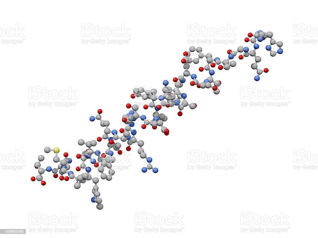 Model of Human Glucagon stock photo