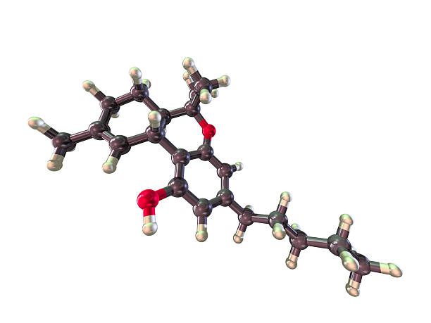 Model of Tetrahydrocannabinol A ball and stick model of a Tetrahydrocannabinol molecule, more commonly known as THC. It is the main psychoactive chemical in cannabis. Isolated on white. thc stock pictures, royalty-free photos & images