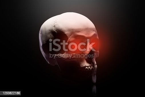 Model of the human skull with red eyes isolated on black background with clipping path. Concept of terror, physiology learning and drawing.