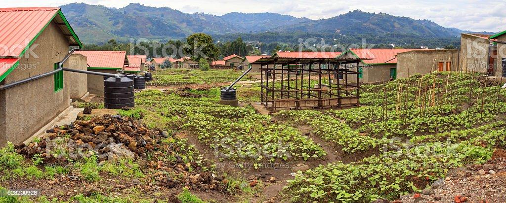 Model resettlement village in Northern Rwanda - Photo