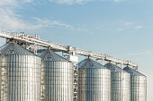 Modern agricultural silos or grain elevator with blue sky on the background. Storage of grain and other different cereals.