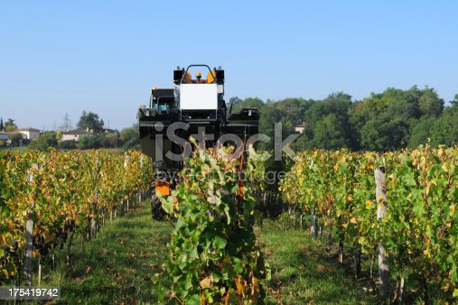 istock Modern Agriculture - XLarge 175419742