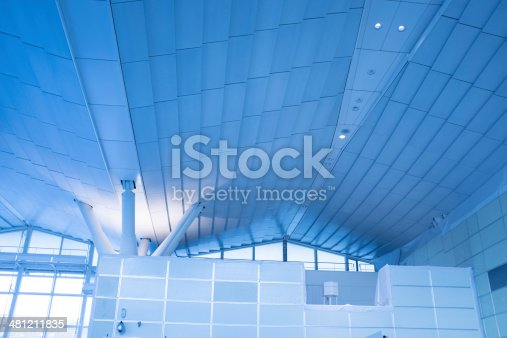 Modern airdrome Ceiling