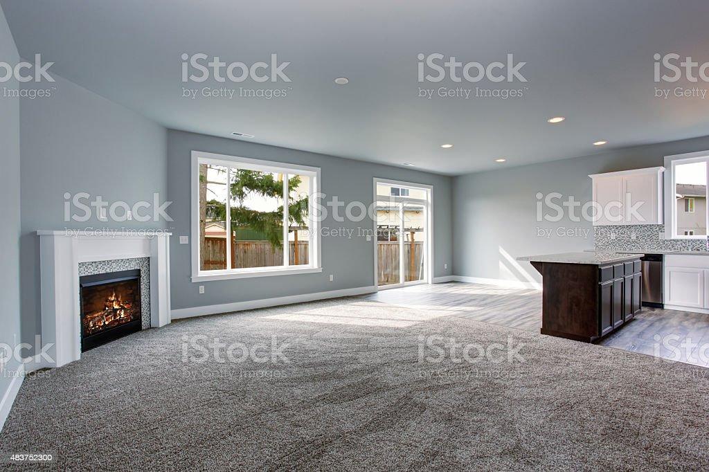 Modernas y completamente gray interior del hogar. - foto de stock