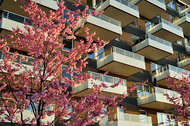 Modernes apartment – Foto