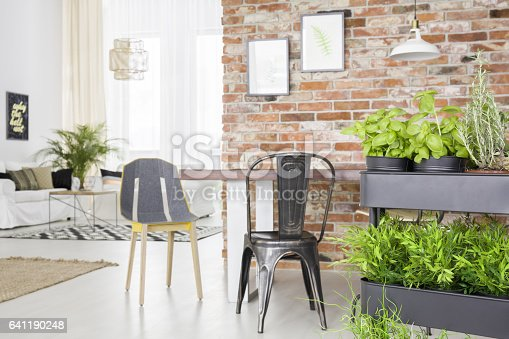 660325278istockphoto Modern apartment with herbs cart 641190248
