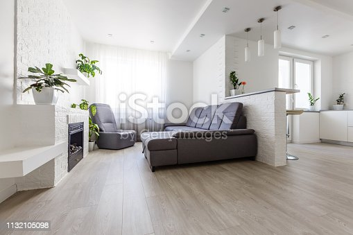 988616560 istock photo Modern apartment with open living room, kitchenette and dining area 1132105098