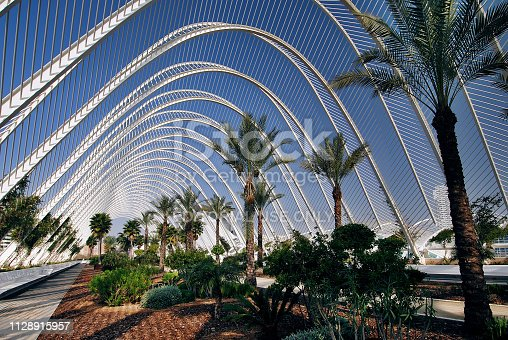 The Umbracle is a space that is a home to numerous sculptures surrounded by nature. It was designed as an entrance to the City of Arts and Sciences. The futuristic architecture the City of Arts and Sciences, an entertainment-based cultural and architectural complex in the city of Valencia (Spain) was designed by Santiago Calatrava and Felix Candela.
