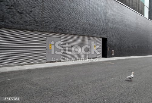 istock Modern architecture wall with seagull 157477351