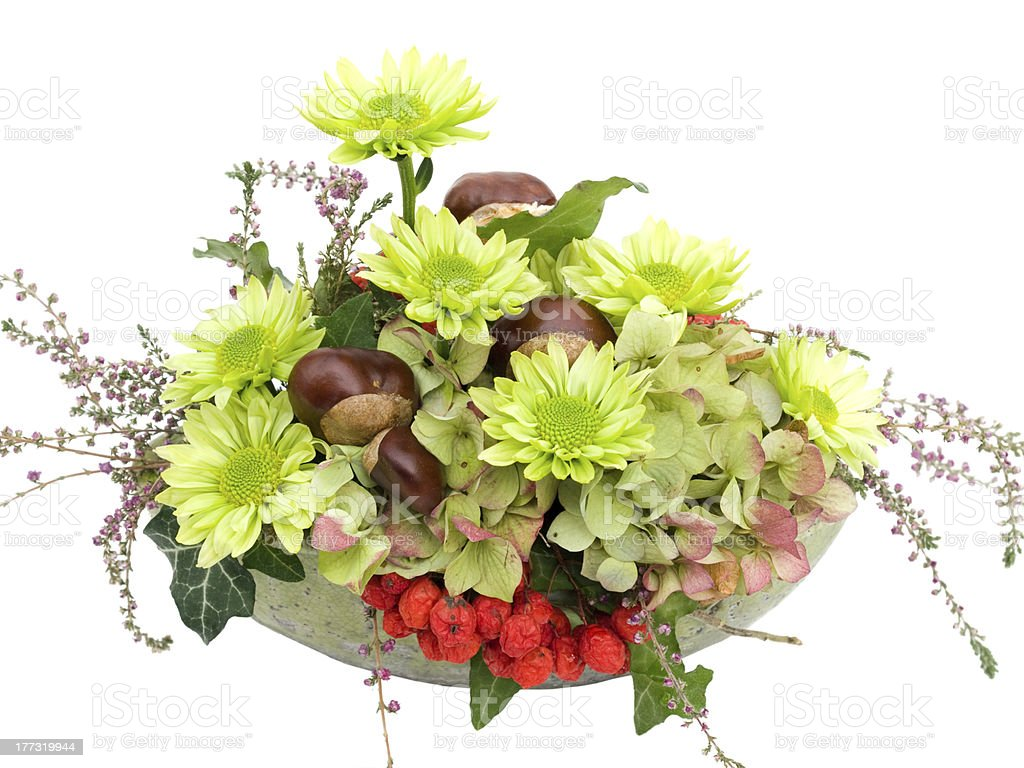 Modern Autumal Flower Arrangement On White Stock Photo Download Image Now Istock