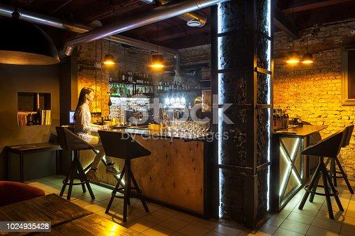 Modern European bar interior.
