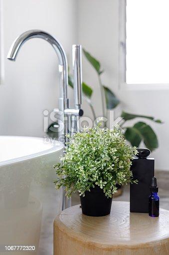 Modern Bathroom Detail - Home Decor / Decoration