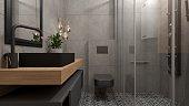 3D interior design of a modern industrial style bathroom