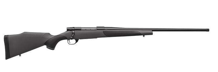 modern bolt carbine isolated on white background