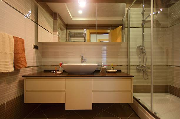 Modern Brown Bathroom