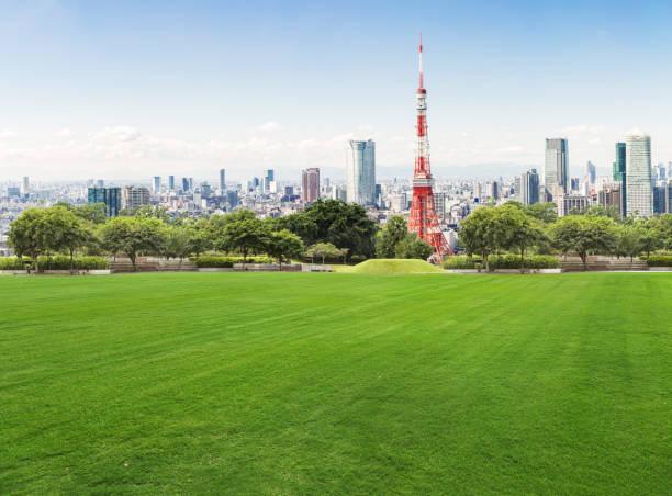 東京の青い空を背景に近代的な建物 - 緑 ビル ストックフォトと画像