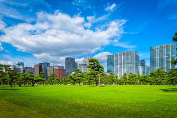 東京の青い空を背景に緑豊かな禅庭園とモダンな建物。 - 緑 ビル ストックフォトと画像