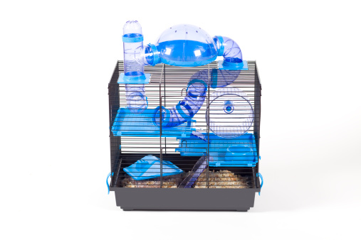 modern cage for hamster XXXL