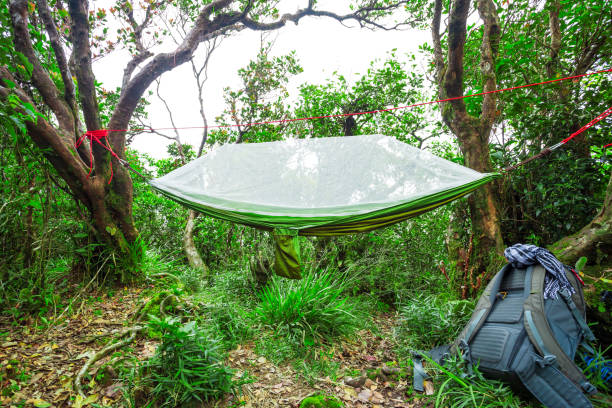 Modern camping hammock on hiking trail stock photo