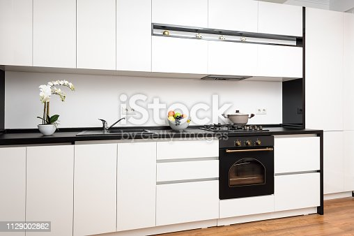 Modern black and white kitchen made in classic style