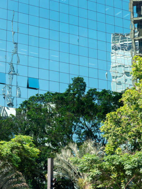 Modern corporate skyscraper building with tree reflections stock photo