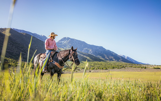A man on horseback in Utah, looking over a grassy plain on a sunny day, with foothills of the Rocky Mountains in the background.