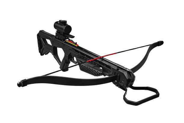 modern crossbow isolate on white background - crossbow stock pictures, royalty-free photos & images